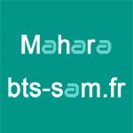 Portfolio Mahara sur bts-sam.fr